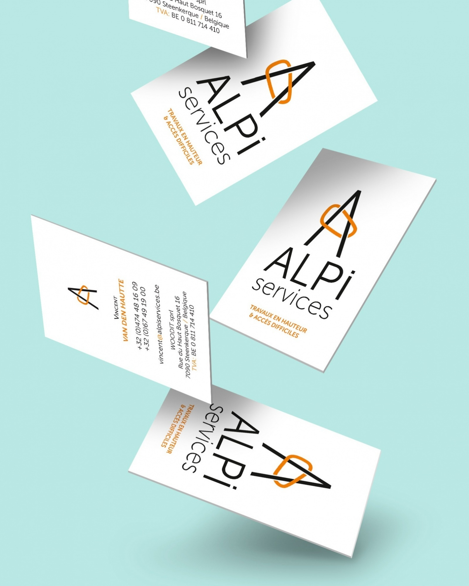0_Alpi services